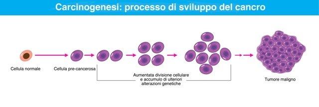 carcinogenesi tumore